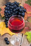 Composition with glass of red wine and grapes on wooden table close-up royalty free stock photo