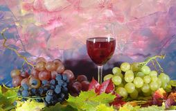 Composition from grapes Stock Photos