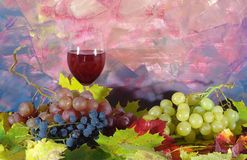 Composition from grapes Stock Photo