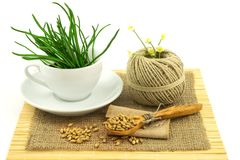 Composition from grass in the cup and plate, seeds, mat, sacking Stock Images