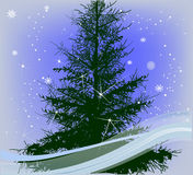 Composition with green fir and snowflakes. Illustration with green fir under snow Royalty Free Stock Photo