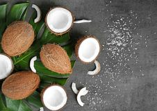 Composition with green leaf and fresh coconuts. On grey background Royalty Free Stock Photo