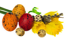 Composition of hand painted Easter eggs, flowers, catkins, daffo Royalty Free Stock Photo