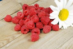 Composition of a handful of ripe raspberries and a large white chamomile Stock Photos