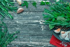 Composition of herbs and spices. For designer background stock photography