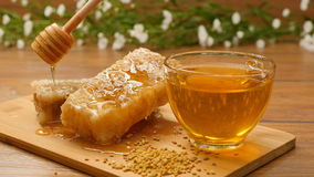Composition of honey and honeycomb. Honey pouring on honeycomb (No 12.1) stock video footage