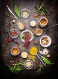 Composition of hot spices and fresh flavoring herbs on dark rustic wooden background. Top view royalty free stock photos