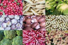 Composition image of different vegetables. Composition image of vegetables at weekly market, radishes, cauliflower, garlic, mushrooms, asparagus, broccoli Stock Images