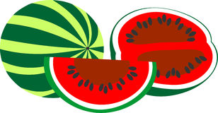 The composition isolated on white background watermelon Royalty Free Stock Photo
