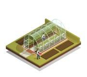 Composition isométrique en serre chaude formée par tunnel illustration stock
