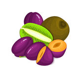 Composition of juicy plumand kiwi. Ripe vector kiwifruit and plum fruits whole  slice appetizing looking. Group  tasty. Composition of juicy plumand kiwi. Ripe Royalty Free Stock Photos