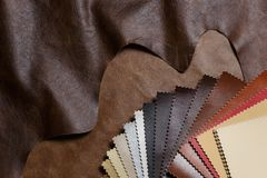 The composition of leather samples on a natural cow leather. Top view. Stock Photos