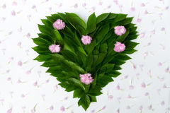 Composition of leaves and flowers - a green heart with pink flowers. Concept of love of nature and protection of the environment Royalty Free Stock Image
