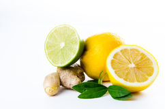 Composition of lemon lime and mint leaves Royalty Free Stock Images
