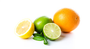 Composition of lemon orange and lime and mint leaves Royalty Free Stock Images