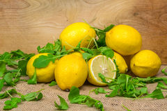 Composition of lemons and green salad Stock Image