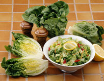 Composition with lettuces Royalty Free Stock Image