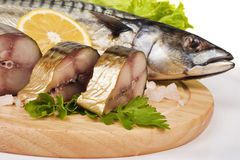 A composition with mackerel fish Royalty Free Stock Images