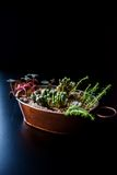 Composition made in a copper pot with succulent plants Stock Images