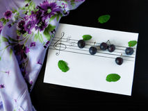Composition made of plums related with the topic of music. Composition made of flowers, plums, mint, shawl and stave related with the topic of music royalty free stock photos