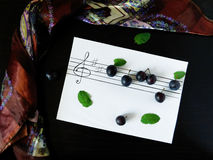 Composition made of plums related with the topic of music. Composition made of flowers, plums, mint, shawl and stave related with the topic of music royalty free stock images