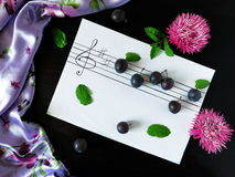 Composition made of plums related with the topic of music Royalty Free Stock Photos
