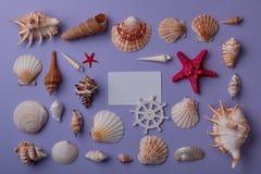 Composition marine avec la carte cadeaux Image stock