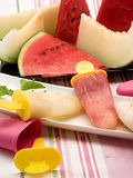 Composition with melon and watermelon ice cream Stock Photos