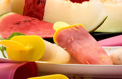 Composition with melon and watermelon ice cream Royalty Free Stock Photo