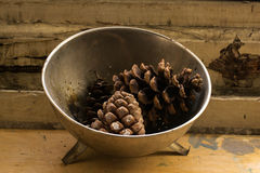 Composition of a metal plate filled with pine cones Royalty Free Stock Image