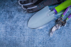 Composition of metal trowel secateurs protective gloves on metal Stock Image