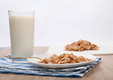 Composition of milk and flocks Royalty Free Stock Photography