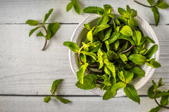 Composition of the mint leaves on the white wooden table top view Royalty Free Stock Photography