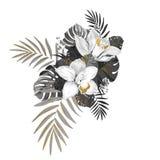 Composition monochrome avec les usines exotiques Deux orchidées, feuilles de monstera et paume décorée par l'or donnent à des élé illustration de vecteur