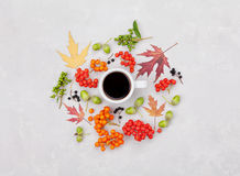 Composition of morning coffee mug, autumn leaves and berry on light background overhead view. Cozy breakfast. Flat lay style. Stock Image