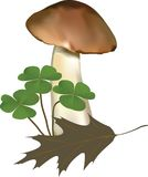 A composition with a mushroom and grass. Vector illustration of a mushroom with a dry leaf and plants. The picture was created using meshes and gradients vector illustration