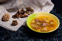 Composition with mushroom soup in green plate, dried wild mushro Stock Image