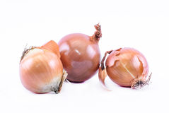 Composition of ocher onions on a white background Stock Photography
