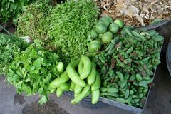 Composition Of Fresh Vegetables And Herbs, Asia Royalty Free Stock Photo