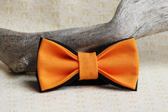 Composition: orange with a black bow tie and a wooden stick curve on a beige background. Royalty Free Stock Image