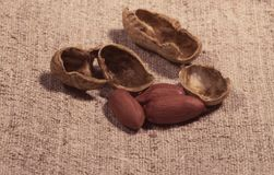 Composition of peanuts  to make oil, peanut butter. Great for healthy and dietary nutrition. Concept of: condiments, dried fruit,. Food stock photography