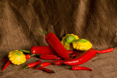 Composition with pepper and patisons Stock Photography