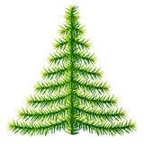 Composition of pine branches in shape of christmas tree Stock Photos