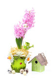 Composition with pink hyacinth, birdhouse, eggs Royalty Free Stock Photo