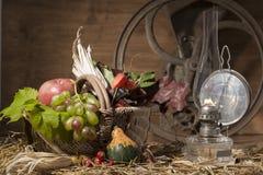 Composition pittoresque en automne avec le panier, fruits, potiron, victoire Images libres de droits