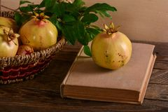 Composition of pomegranates and book Royalty Free Stock Images