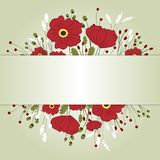 Composition of poppies and wild flowers on a light background. Card. Illustration Stock Photos