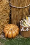 Composition of pumpkins with hay at wood background royalty free stock photos