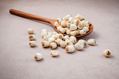 Composition of raw lotus seeds .The asian popular seed for food Stock Images