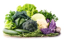 Composition with raw organic vegetables. Royalty Free Stock Photography